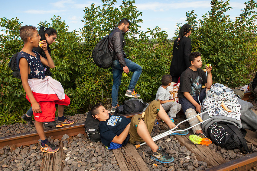 The Hassanein family rests on the railway line that is used as a crossing point between Serbia into Hungary by mostly Syrian refugees. Refugees at Roszke Crossing on Serbian-Hungarian Border.