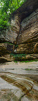 The canyon wall of LaSalle Canyon is shown in summer, LaSalle Canyon, Starved Rock State Park, LaSalle County, Illinois