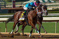 "ARCADIA, CA. OCTOBER 7: #6 Roy H, ridden by Kent Desormeaux, overtakes #5 Mr. Hinx, ridden by Drayden Van Dyke, in the stretch of the Santa Anita Sprint Championship (Grade l)""Win and You're In Sprint Division"" on October 7, 2017, at Santa Anita Park in Arcadia, CA. (Photo by Casey Phillips/Eclipse Sportswire/Getty Images)"