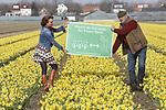 Foto: VidiPhoto<br /> <br /> NOORDWIJKERHOUT  &ndash; Kwekers uit de Bollenstreek willen voorkomen dat toeristen dwars door hun bloeiende tulpen, narcissen en hyacinten banjeren. Vorig jaar resulteerde dat in forse beschadigingen van de bloemenvelden. Mede-initiatiefnemer Anja Jansze plaatste daarom donderdag samen met kweker Rudolph Uittenbogaard in Noordwijkerhout het eerste informatiebord om toeristen uit de bloeiende bollenvelden te weren. In totaal worden er 500 borden geplaatst. Wie een foto, video of selfie wil maken, wordt vriendelijk gevraagd dit op enige afstand te doen. Behalve het feit dat toeristen zich zonder toestemming op priv&eacute;terrein begeven, willen kwekers vooral de kwaliteit van de bollen beschermen. Bij het verduurzamen van de bollenteelt wordt gewerkt met strikte hygi&euml;neregels. Hoe schoner de teelt, hoe minder ziekten en plagen en hoe minder gewasbeschermingsmiddelen er gebruikt hoeven te worden. Lopen door de velden kan  bollenziekten verspreiden, met als gevolg grote schade aan de teelt. Daarnaast zijn vertrapte bloemen commercieel onbruikbaar. De informatieborden zijn een initiatief van de leden van branchevereniging KAVB. Het toeristenseizoen start 22 maart onder meer met de opening van Keukenhof, De Tulperij en diverse pluktuinen. Dit voorjaar worden in totaal meer dan 3 miljoen toeristen verwacht. Het bollenareaal in Nederland beslaat zo&rsquo;n 25.000 hectare.