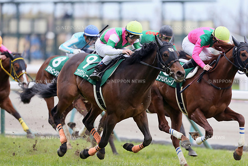 (L-R) /Kosoku Straight (Keita Tosaki), /Bom Servico (Kohei Matsuyama),<br /> MARCH 18, 2017 - Horse Racing :<br /> Kosoku Straight ridden by Keita Tosaki wins the Chunichi Sports Sho Falcon Stakes at Chukyo Racecourse in Aichi, Japan. (Photo by Eiichi Yamane/AFLO)