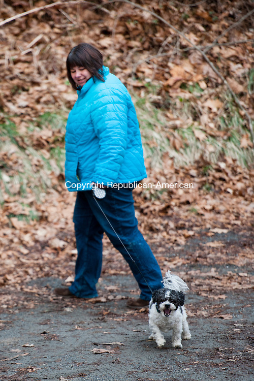 SOUTHBURY, CT - 13 January 2014-011314EC01--    Wild Art. Terry Ralston and her dog Jack take a walk at Platt Park near Flood Bridge Road in Southbury Monday. The trails  were busier than usual as temperatures warmed up across Connecticut. Erin Covey Republican-American.
