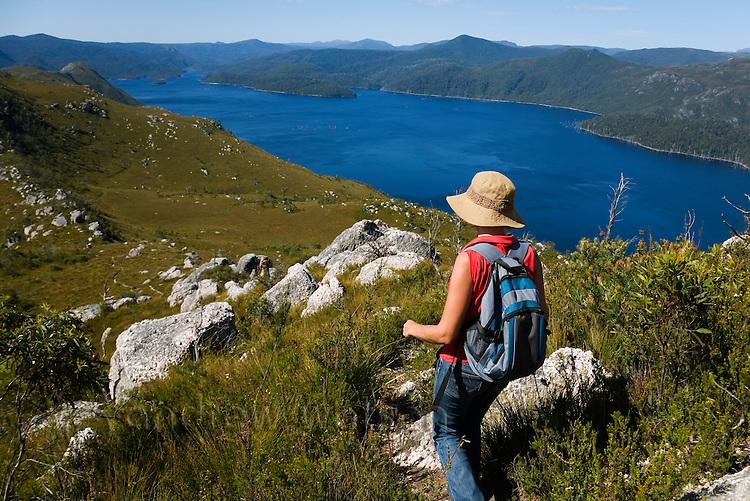A woman hiking Mount Farrell in Tasmania's western highlands.  Tullah, Tasmania, AUSTRALIA