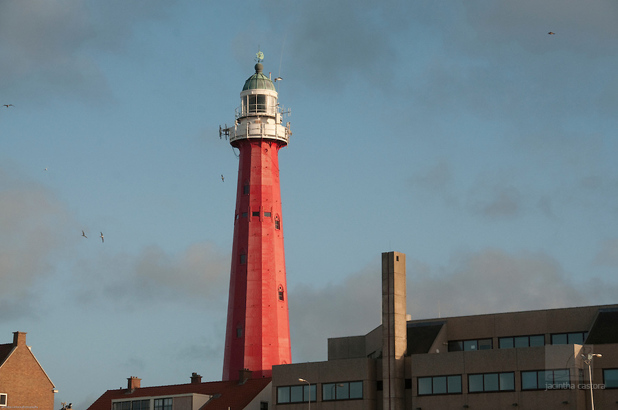 Lighthouse Scheveningen, The Netherlands, surrounded by sea gulls