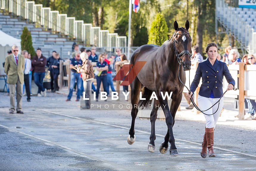 USA-Erin Sylvester (NO BOUNDARIES) CCI4* FIRST HORSE INSPECTION: 2014 FRA-Les Etoilles de Pau (Wednesday 22 October) CREDIT: Libby Law COPYRIGHT: LIBBY LAW PHOTOGRAPHY - NZL