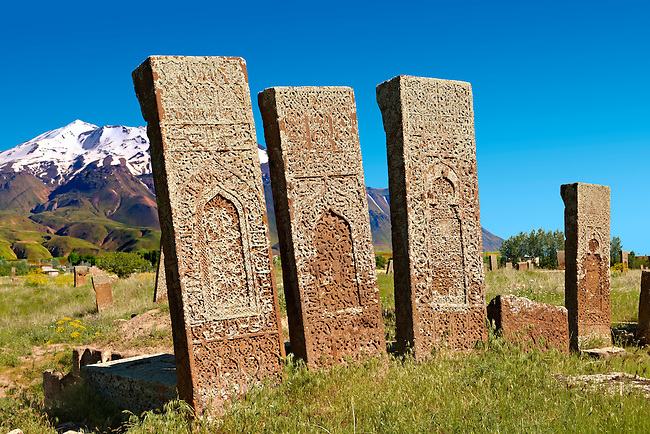 Seljuk headstones  with Arabic & Persian floral, geometric & calligraphic decorations in the Seljuk Cemetary at Ahlat, Lake Van, Turkey. Cenetary dates from eleventh to sixteenth century. 3