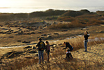 Visitors and elephant seals at Ano Nuevo State Park