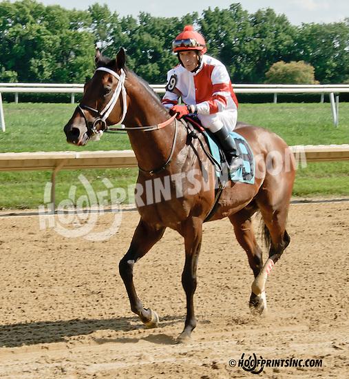 General Ike winning at Delaware Park on 7/17/14