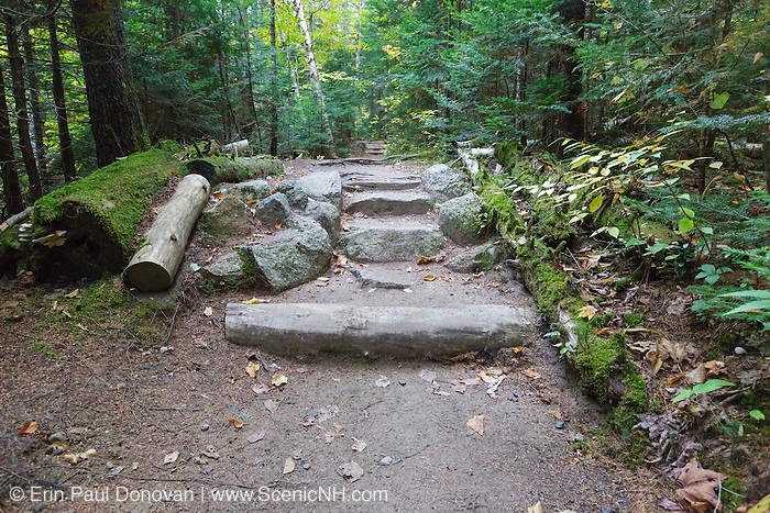 Natural looking stone steps along Zealand Trail in Bethlehem, New Hampshire USA during the autumn months. This trail utilizes sections of the old Zealand Valley Railroad (1884-1897).