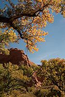 Autumn, Utah.