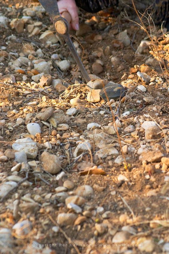 Truffle soil and pick at La Truffe de Ventoux truffle farm, Vaucluse, Rhone, Provence, France