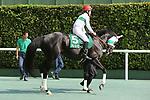 Ares Barows (Yuji Hishida), AUGUST 19, 2018 - Horse Racing : Ares Barows ridden by Yuji Hishida before the TV Nishinippon Corp.Sho Kitakyushu Kinen at Kokura Racecourse in Fukuoka, Japan. (Photo by Eiichi Yamane/AFLO)