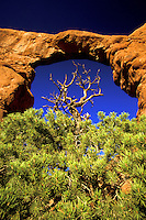 Turret Arch.  Arches National Park, Utah.