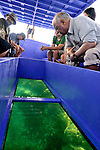 Conservationist and Ashoka Fellow, Adam Tuller, founder of the Africa Conservation Trust, gives members of Ashoka's Kenya office a tour of his innovative coral reef regeneration project off the coast of Mombassa, Kenya.