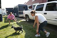 Goat chasers-No ID-NW Washington Fair. August 16, 2009 PHOTOS BY MERYL SCHENKER            .schenker IMG_9264.JPG