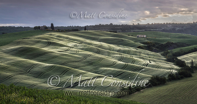 Rolling Tuscan hills with interesting light. (Photo by Travel Photographer Matt Considine)