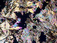 ASPIRIN CRYSTALS ARE OPTICALLY ACTIVE <br /> Acetysalicylic Acid<br /> C6H4(COOH)CO2CH3; 30X mag - polarized light shows optical activity