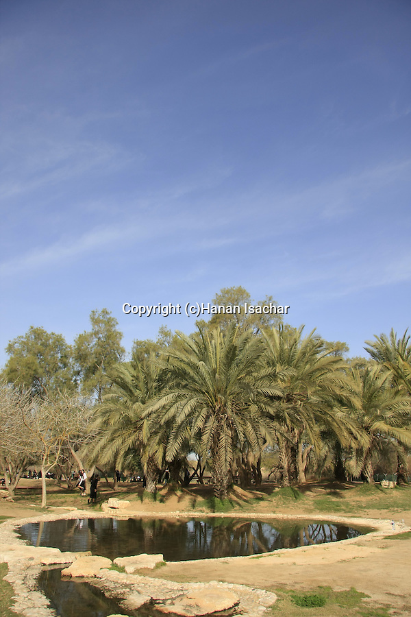 Israel, Besor region in the northern Negev. The pool at Eshkol National Park