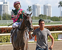 HALLANDALE BEACH, FL - FEBRUARY 04:  Tequilita (KY) #4 with jockey Luis Saez on board heads to the winners circle, after winning the Forward Gal Stakes G2 at Gulfstream Park on February 04, 2017 in Hallandale Beach, Florida. (Photo by Liz Lamont/Eclipse Sportswire/Getty Images)