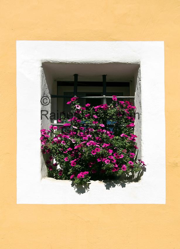 Oesterreich, Kaernten, Kuenstlerstadt Gmuend im Liesertal: Altstadt, Fenster mit Blumenschmuck | Austria, Carinthia, artist town Gmuend at Lieser Valley: old town, window decorated with flowers