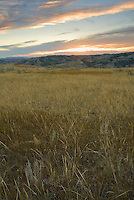 Grasslands fill the eye at sunset at at Theodore Roosevelt National Park (south unit), in western North Dakota