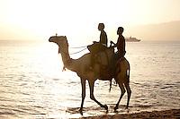 Locals ride a camel on Aqaba's beach in Jordan