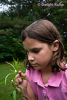 SP08-681z  Child investigating Meadow Spittlebug foam home, Philaenus spumarius