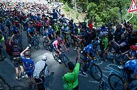 Maglia Rosa / overall leader Richard Carapaz (ECU/Movistar) up the Passo di San Boldo<br /> <br /> Stage 19: Treviso to San Martino di Castrozza (151km)<br /> 102nd Giro d'Italia 2019<br /> <br /> ©kramon