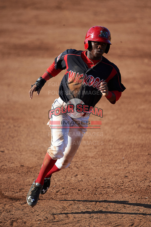 Batavia Muckdogs shortstop Anfernee Seymour (3) running the bases during a game against the Vermont Lake Monsters August 9, 2015 at Dwyer Stadium in Batavia, New York.  Vermont defeated Batavia 11-5.  (Mike Janes/Four Seam Images)