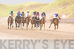 Runners and riders providing excitement in the Tommy Cahill Cup at Glenbeigh races at Rossbeigh beach on Sunday the race was won by the Coakley family from Glenbeigh horse Neon Tiger, beating What can I Say into second place and Top Donka in third place