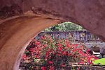 Ancient arch and bougainvillea in ruin, Antigua, Guatemala