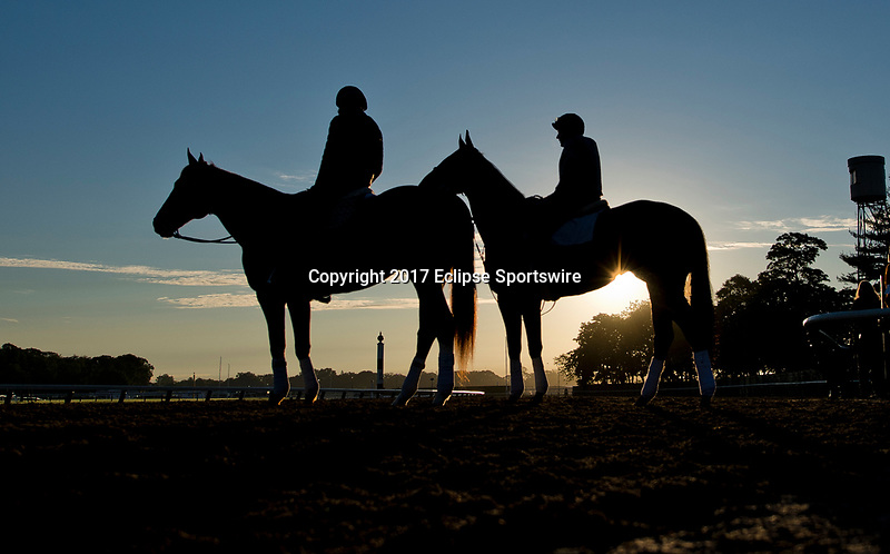 ELMONT, NY - JUNE 09: Horses come onto the track to exercise during morning workouts in preparation for the Belmont Stakes at Belmont Park on June 9, 2017 in Elmont, New York (Photo by Scott Serio/Eclipse Sportswire/Getty Images)