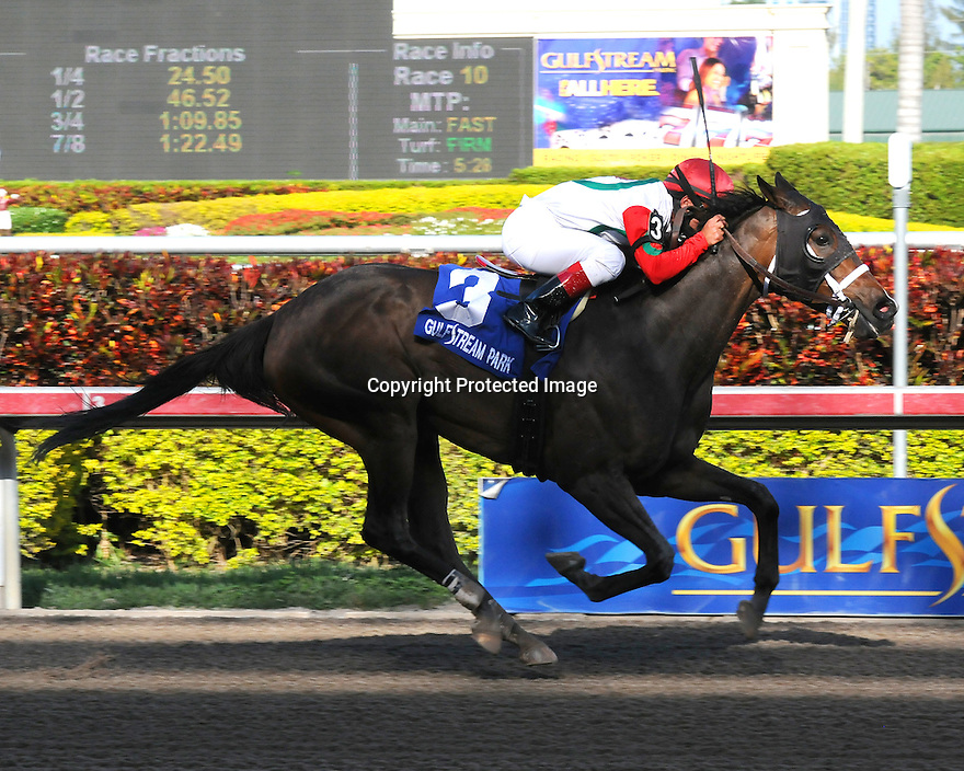 All Due Respect captures the Ocala Stakes at Gulfstream Park on 3/27/11. Ridden by Javier Castellano