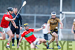 Jack Goulding Kerry in action against Davis Kenny Mayo in the 2019 Hurling League Division 2a Round 3 at Austin Stack Park in Tralee, on Sunday.