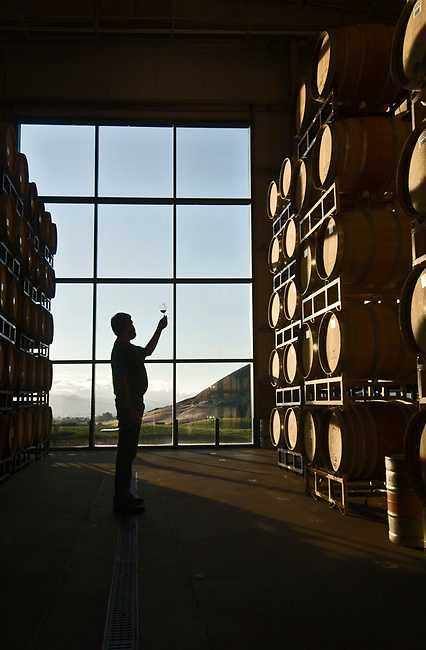 Glass of wine examined at winery near San Luis Obispo