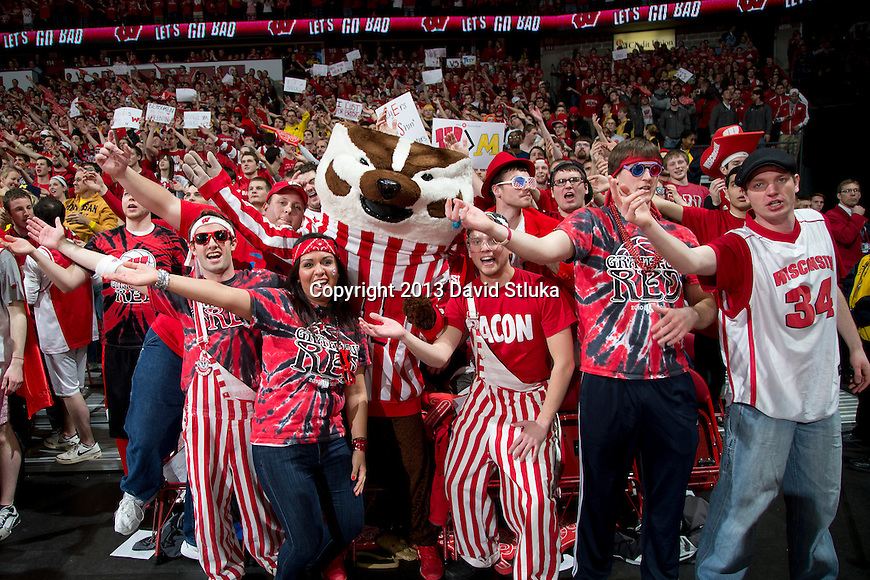 Wisconsin Badger fans cheer with mascot Bucky Badger during a Big Ten Conference NCAA college basketball game against the Michigan Wolverines Saturday, February 9, 2013, in Madison, Wis. The Badgers won 65-62 (OT). (Photo by David Stluka)