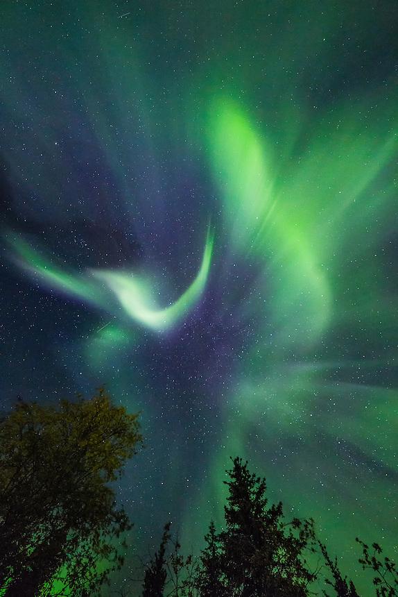 Aurora Borealis near Chena Lakes, Fairbanks, Alaska