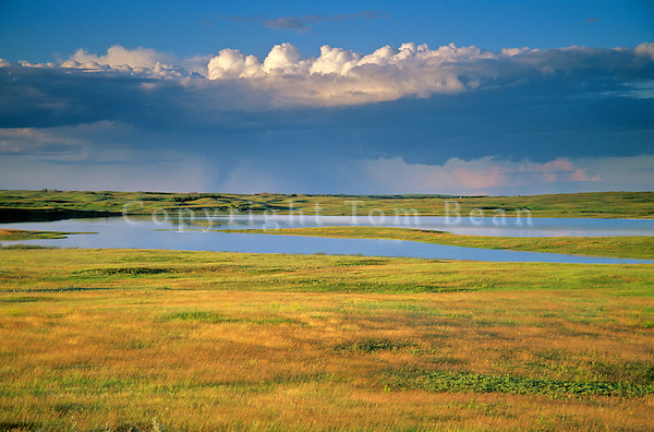 Rain storm over prairie with pothole ponds at Lostwood National Wildlife Refuge, Kenmare, North Dakota, AGPix_0265.