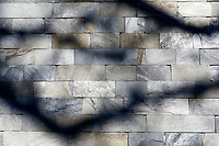 Dark shadows of tree branches cast on wall made of cut rectangular natural stone