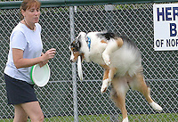 05/05/05....Gary Wilcox/staff......Megan Grabenhorst and Roxy in a frisbee demo at the opening of Paws Park at Wingate Park in Jacksonville Beach..Megan Grabenhorst and Roxy are members of the Greater Jacksonville disc & dog club in Jacksonville.