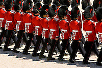 Trooping the Colour parade soldiers with SLR rifles, London, United Kingdom.