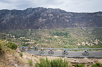 peloton up the first categorised climb of the day: the Puerto de Bernardo<br /> <br /> Stage 20: Arenas de San Pedro to Plataforma de Gredos (190km)<br /> La Vuelta 2019<br /> <br /> ©kramon