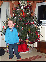 BNPS.co.uk (01202) 558833<br /> Picture: KimEvans/BNPS<br /> <br /> The Evans household Christmas tree in 2009 which they rent from Trees For Rent in Charminster, Dorset. <br /> <br /> En-tree-preneur Peter Inch has found an innovative way to stop Christmas trees being discarded after the festive season - by renting and replanting them.<br /> <br /> The businessman has grown around 3,000 pine trees on his farm that he charges people to use in their homes during the holiday period.<br /> <br /> Peter delivers the trees to customers' doors at the end of November and then collects them in the first week of January.<br /> <br /> Once he has picked up the trees they are placed back in the ground in tubs and linked up to a watering system that revives them after being inside for so long.