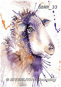 Simon, REALISTIC ANIMALS, REALISTISCHE TIERE, ANIMALES REALISTICOS, paintings+++++KatherineW_SplatterSheep,GBWR33,#a#, EVERYDAY