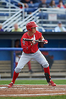 Williamsport Crosscutters outfielder Carlos Duran (13) squares to bunt during a game against the Batavia Muckdogs on August 29, 2015 at Dwyer Stadium in Batavia, New York.  Williamsport defeated Batavia 7-3.  (Mike Janes/Four Seam Images)