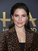 04 November 2018 - Beverly Hills, California - Sophia Bush . 22nd Annual Hollywood Film Awards held at Beverly Hilton Hotel. <br /> CAP/ADM/BT<br /> &copy;BT/ADM/Capital Pictures