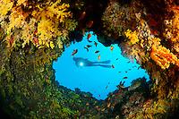 Kleine Hoehle im Korallenriff mit Weichkorallen und Taucher, small cave in coralreef with soft corals and suba diver, Malediven, Indischer Ozean, Baa Atoll, Maldives, Indian Ocean