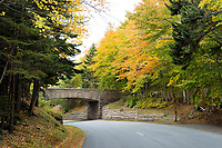 Bridge in Acadia National Park