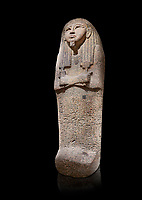 Ancient Egyptian sarcophagus lid of Djehutymes, pink granite, 19th Dynasty (1279-1213 BC.) Thebes, Khokha, TT32. Egyptian Museum, Turin. Black background<br /> <br /> The lid of the coffin of Djehutymes, husband of singer Asset