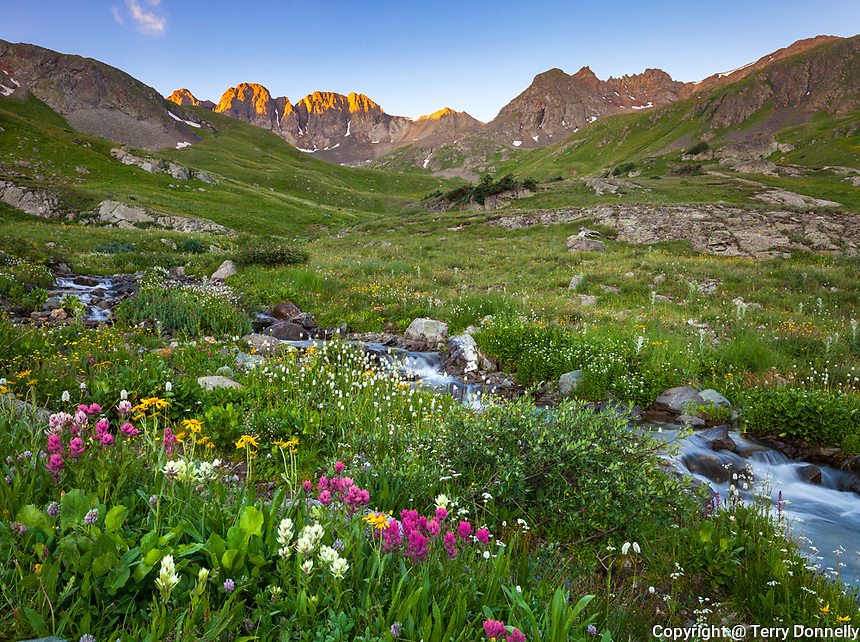 San Juan Mountains, CO<br /> Grizzly creek flows through wildflower meadows beneath Handies Peak in American Basin